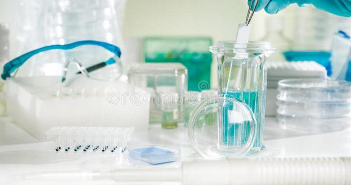 coloración-histoquímica-de-las-muestras-de-tejido-33223744